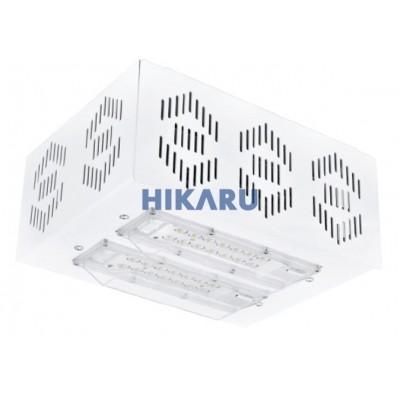 Đèn chiếu sáng LEDXION – Lowbay 40W – 160W