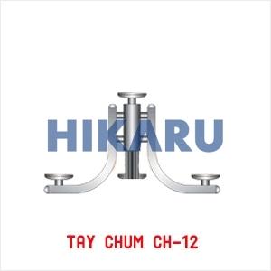 Tay Chùm CH 12
